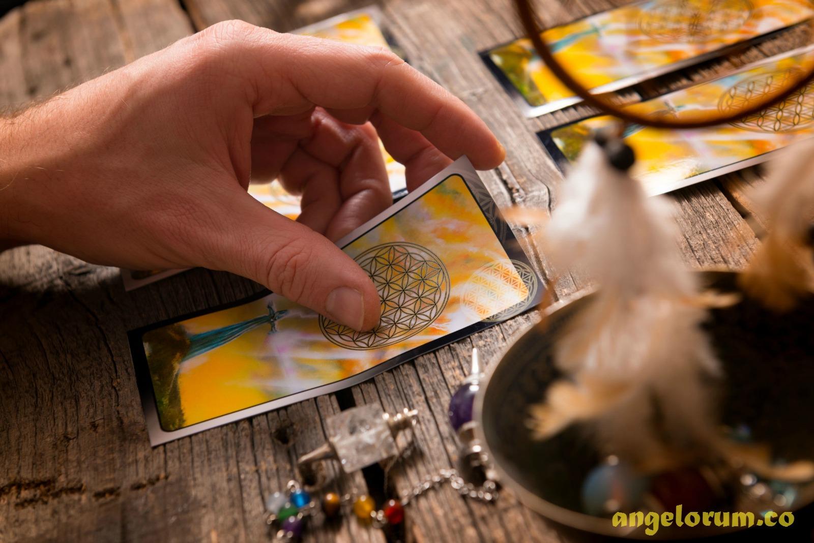 daily tarot draw