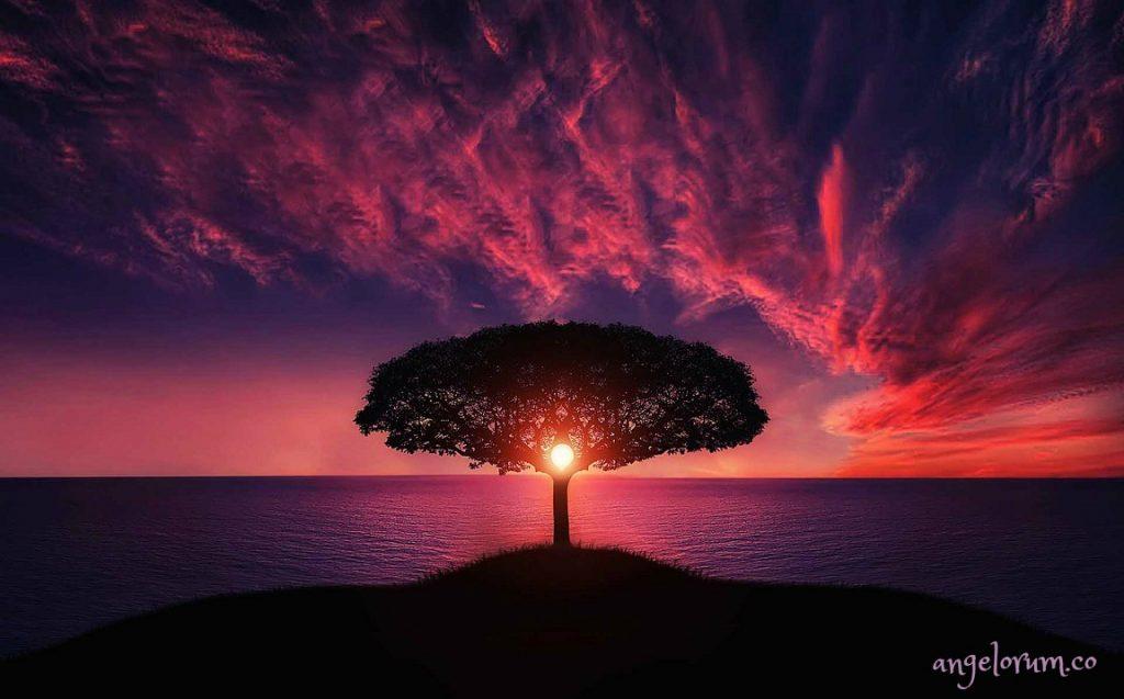 tree-of-life-purple