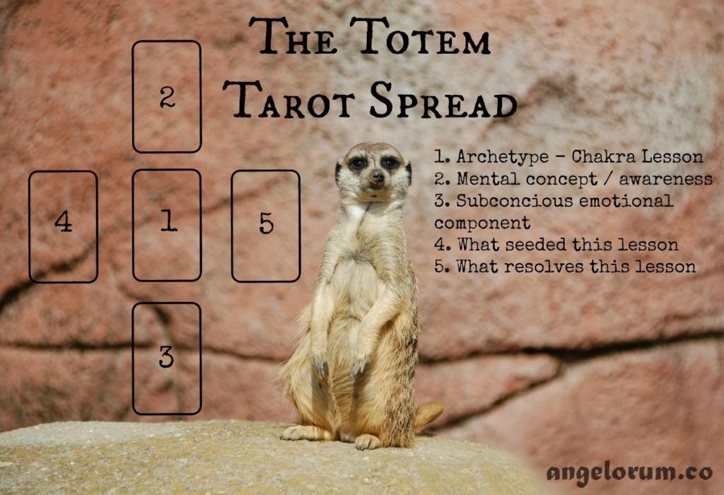 Meerkat Totem Animal Tarot Spread Background