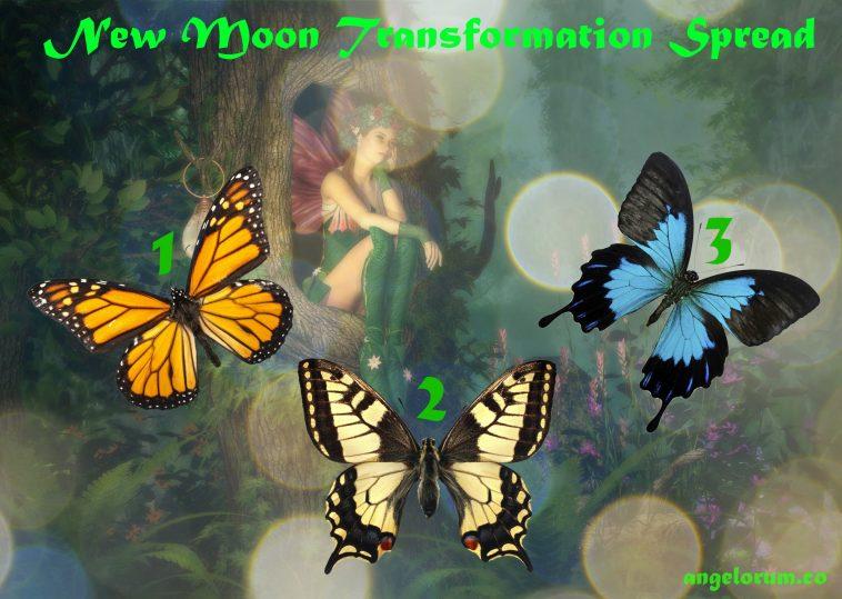New Moon Transformation Tarot Spread