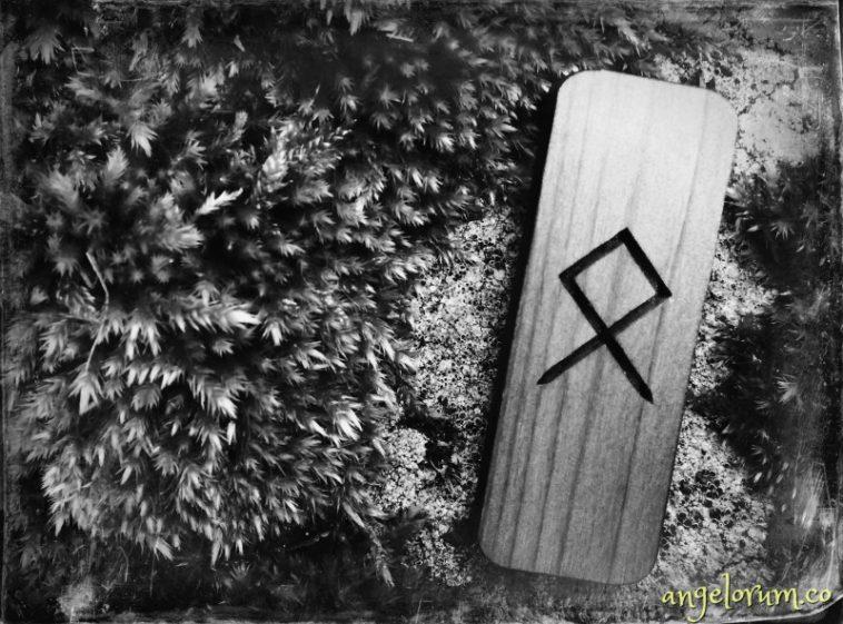 holistic rune meanings and correspondences for the elder futhark rune othala