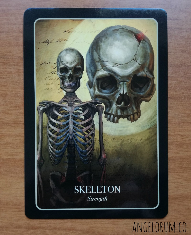 Skeleton from the Halloween Oracle