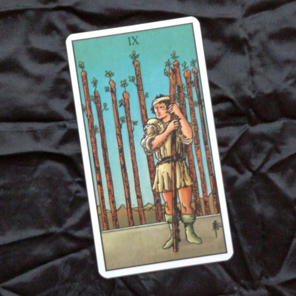 2017 Year Review 9 of Wands Tarot Card