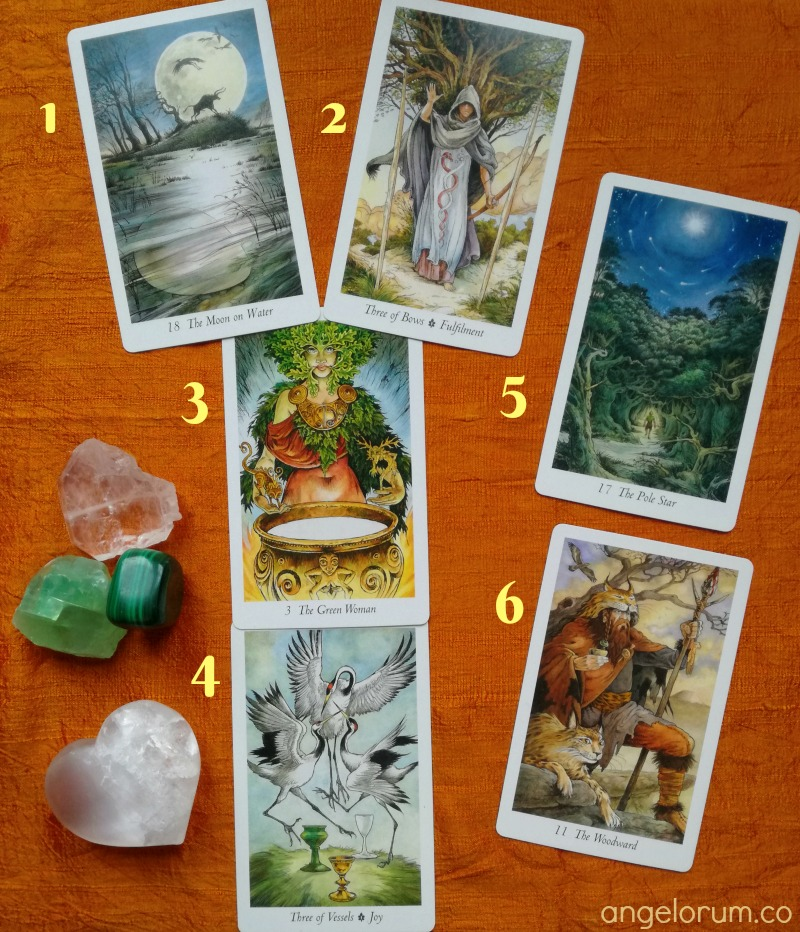 Wildwood Tarot Deck Interview
